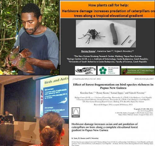 Paraecologist Bonny Koane in the field, presenting at the Association for Tropical Biology and Conservation Conference, and co-authoring research papers