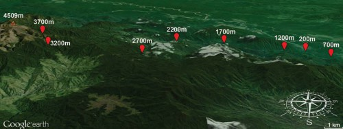 Map of the Mt. Wilhelm transect