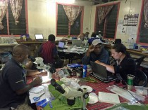 Night in the Swire station laboratory, with students working on their research projects.