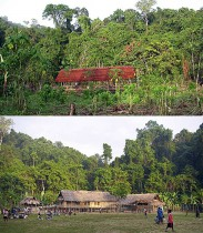 Before and now: First steps in building BRC field camp in Wanang, and its current situation.